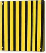 Yellow And Black Stripes Acrylic Print