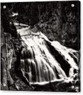 Yellowstone's Gibbon Falls Acrylic Print