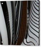 Zebra Glass Acrylic Print