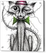 Zippy Cat Acrylic Print