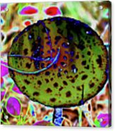 10-15-16--8400 # 2 Don't Drop The Crystal Ball Acrylic Print