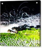 The Adobe Acrylic Print