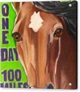100 Mile Horse Acrylic Print