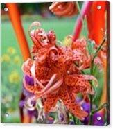 10142017106 Acrylic Print