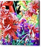 10142017107 Acrylic Print
