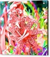 10142017108 Acrylic Print