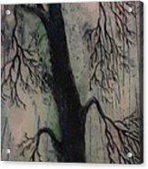 #1081 Perfect Balance Acrylic Print