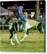 Bronco Riding Acrylic Print