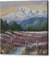 110123-68  Winters' Rejuvenation Acrylic Print