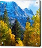 Nature Art Landscape Canvas Art Paintings Oil Acrylic Print