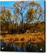 Nature Landscape Work Acrylic Print