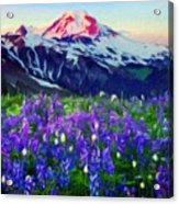 Nature Landscape Graphics Acrylic Print