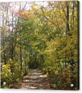 Autumn In Ma Acrylic Print