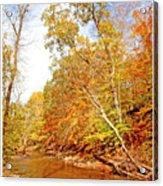 Pennsylvania Stream In Autumn Acrylic Print