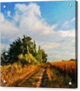 Types Of Landscape Nature Acrylic Print