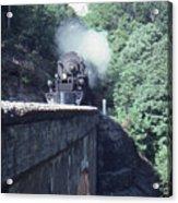 1218 At Mill Creek Acrylic Print