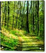 Nature Landscape Oil Painting On Canvas Acrylic Print
