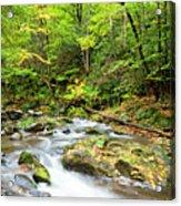1266 Great Smoky Mountain National Park Acrylic Print
