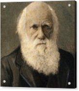 Charles Robert Darwin, 1809-1882 Acrylic Print
