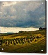 Landscape Planting Acrylic Print