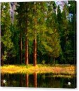 Landscape Poster Acrylic Print