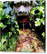 Public Fountain In Palma Majorca Spain Acrylic Print