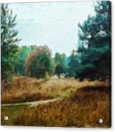 Nature Landscape Wall Art Acrylic Print