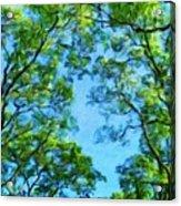 Landscape Nature Scene Acrylic Print