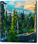Landscape Pictures Nature Acrylic Print