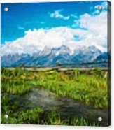 Nature Cool Landscape Acrylic Print