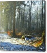 Oil Paintings Art Landscape Nature Acrylic Print