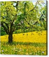 Oil Painting Landscape Pictures Acrylic Print