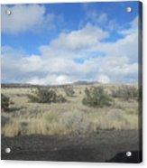 Arizona Landscape Acrylic Print