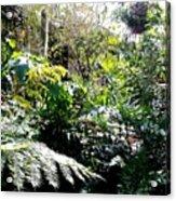 Brooklyn Garden Acrylic Print