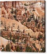 Bryce Canyon - Utah Acrylic Print