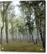 New Landscape Acrylic Print