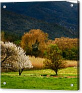 South Of France Series Acrylic Print