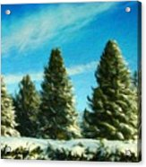 Nature Art Original Landscape Paintings Acrylic Print