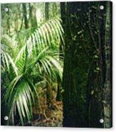 Jungle 72 Acrylic Print
