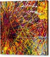 16-10 String Burst Acrylic Print