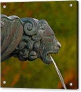 16- Fountain Acrylic Print