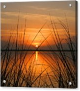 Sunrise / Sunset / Indian River Acrylic Print