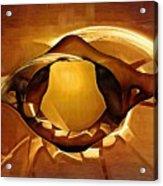 Atlas Anatomy Art Acrylic Print