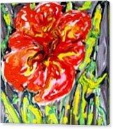 Digital Flower Painting Acrylic Print
