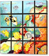 17 Fish Acrylic Print by Jennifer Lommers