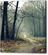 Landscape Oil Painting On Canvas Acrylic Print
