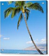 Tropical Beach Acrylic Print