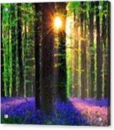 Natural Landscape Acrylic Print