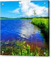 Nature Oil Paintings Landscapes Acrylic Print