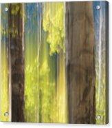 18x34 Acrylic Print